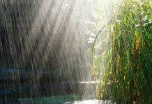 india-news/heavy-rain-will-effect-normal-life-in-mumbai-